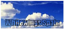 logotipo de whitewings spain
